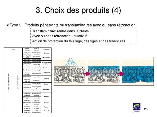 23 3. Choix des produits (4) Type 3 : Produits pénétrants ou translaminaires avec ou sans rétroaction Translaminaire: ren...