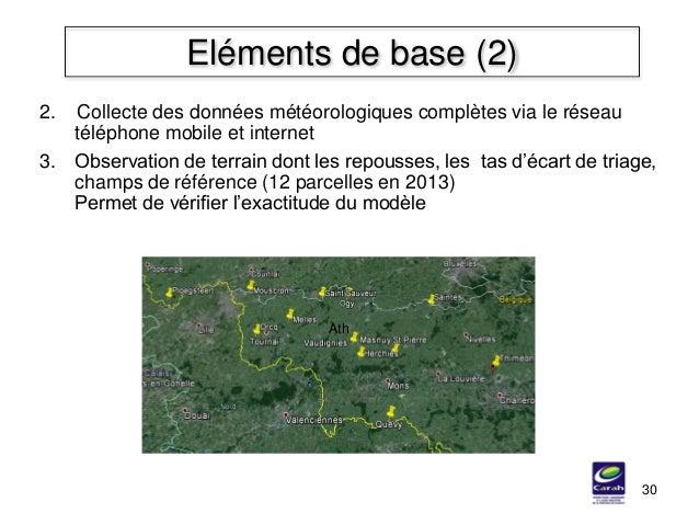 30 Eléments de base (2) 3. Observation de terrain dont les repousses, les tas d'écart de triage, champs de référence (12 p...
