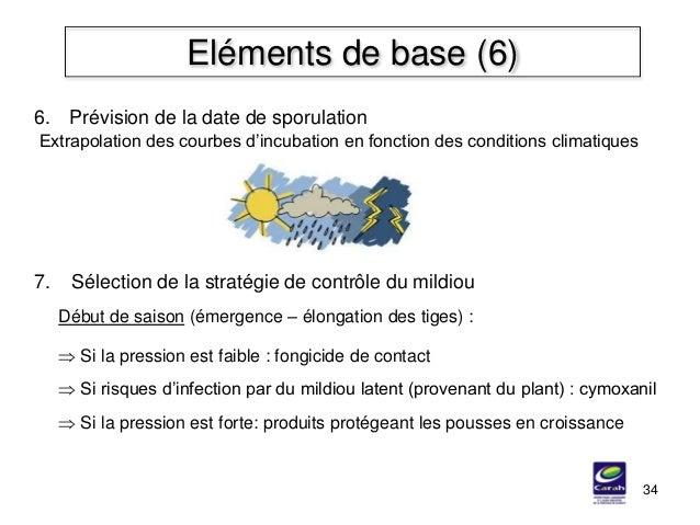 34 Eléments de base (6) 7. Sélection de la stratégie de contrôle du mildiou Début de saison (émergence – élongation des ti...