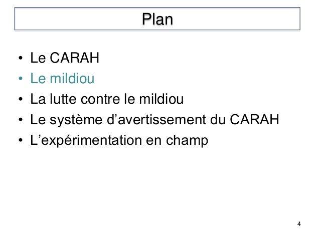 • Le CARAH • Le mildiou • La lutte contre le mildiou • Le système d'avertissement du CARAH • L'expérimentation en champ 4 ...