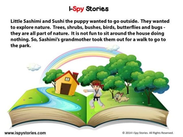 Duck, Duck, Goose! An I-Spy Story for Kids