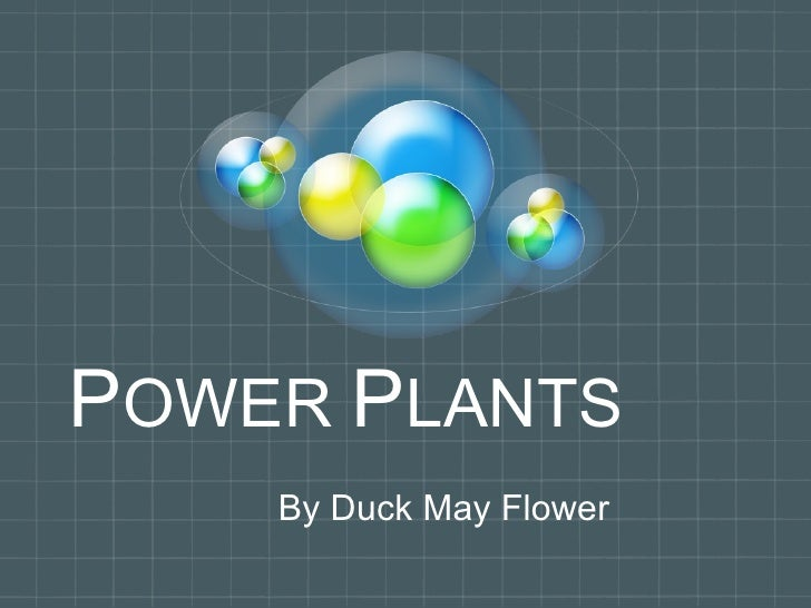P OWER  P LANTS By Duck May Flower