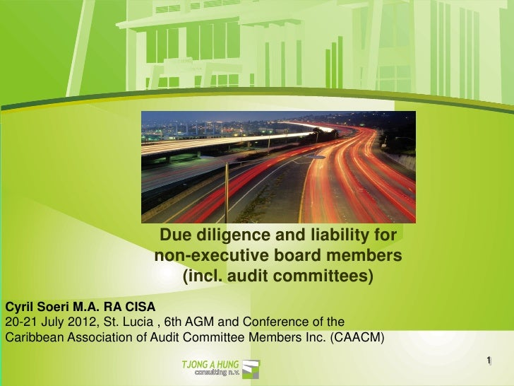 Due diligence and liability for                       non-executive board members                          (incl. audit co...