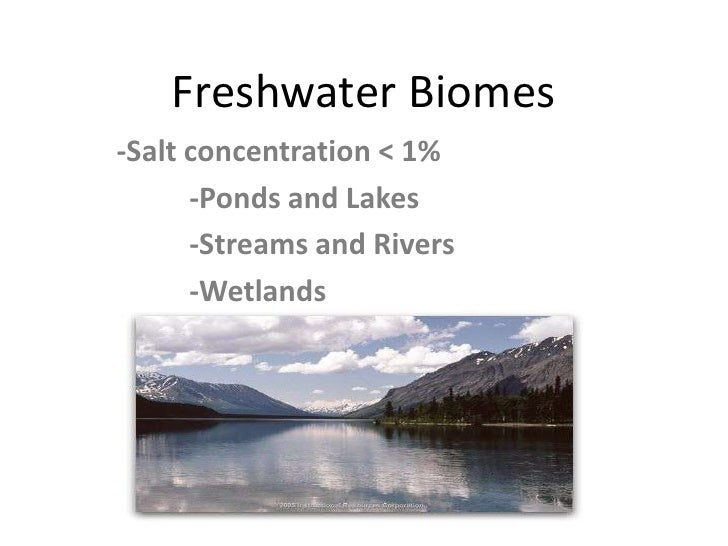 Freshwater Biomes<br />-Salt concentration < 1%<br />	-Ponds and Lakes<br />	-Streams and Rivers<br />	-Wetlands<br />