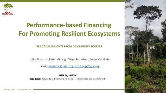 Transforming Lives and Landscapes with Trees Performance-based Financing For Promoting Resilient Ecosystems Lalisa Duguma,...