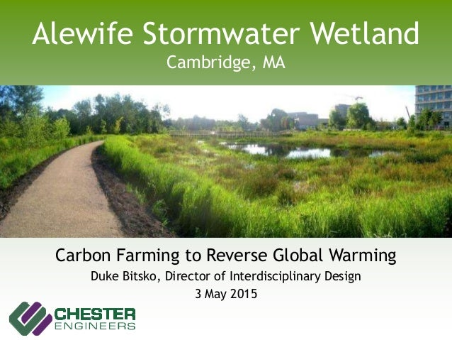 Alewife Stormwater Wetland Cambridge, MA Carbon Farming to Reverse Global Warming Duke Bitsko, Director of Interdisciplina...