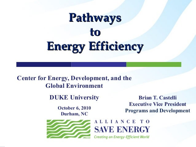 Center for Energy, Development, and the Global Environment DUKE University October 6, 2010 Durham, NC Brian T. Castelli Ex...