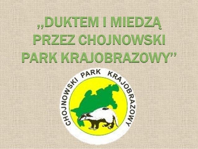 Chojnowski Park Krajobrazowy – park krajobrazowy leżący na Równinie Warszawskiej i skraju Doliny Środkowej Wisły – na połu...