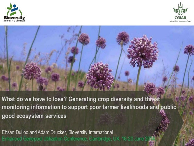 What do we have to lose? Generating crop diversity and threat monitoring information to support poor farmer livelihoods an...