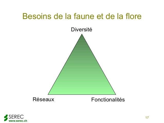 www.serec.chBesoins de la faune et de la flore17DiversitéFonctionalitésRéseaux