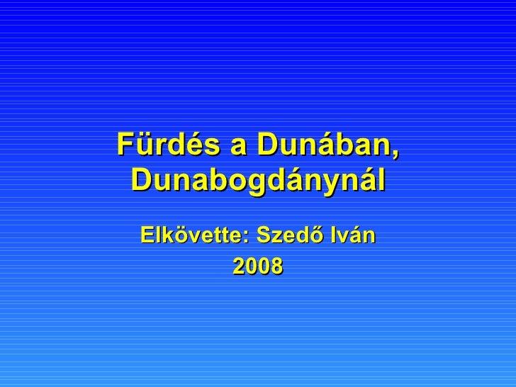 Fürdés a Dunában, Dunabogdánynál Elkövette: Szedő Iván 2008
