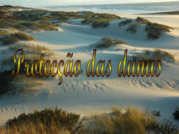 Protecção das dunas