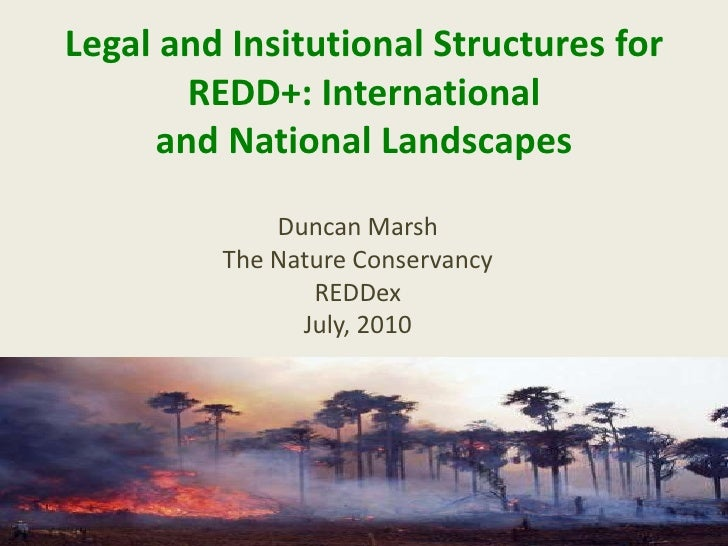 Legal and Insitutional Structures for REDD+: International and National Landscapes<br />Duncan Marsh<br />The Nature Conse...