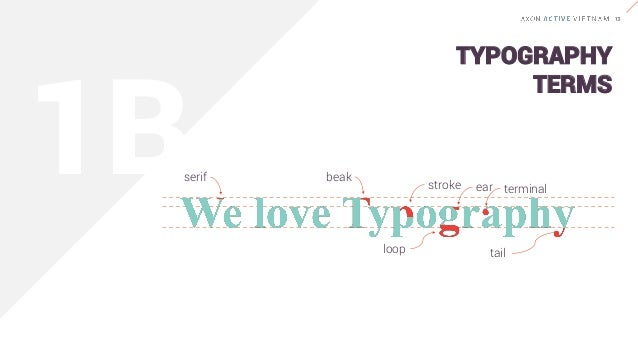 """Serif typefaces are called """"serifs"""" in reference to the small lines that are attached to the main strokes of characters wi..."""