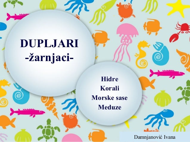 DUPLJARI -žarnjaci- Hidre Korali Morske sase Meduze Damnjanović Ivana