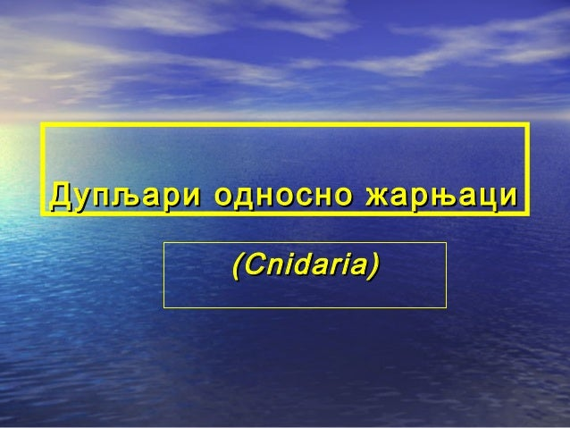 Дупљари односно жарњаци ( Cnidaria)
