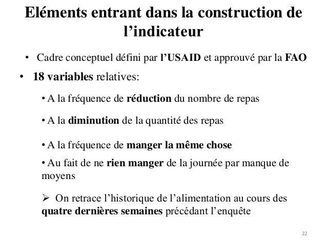 Eléments entrant dans la construction de l'indicateur 22 • Cadre conceptuel défini par l'USAID et approuvé par la FAO • 18...