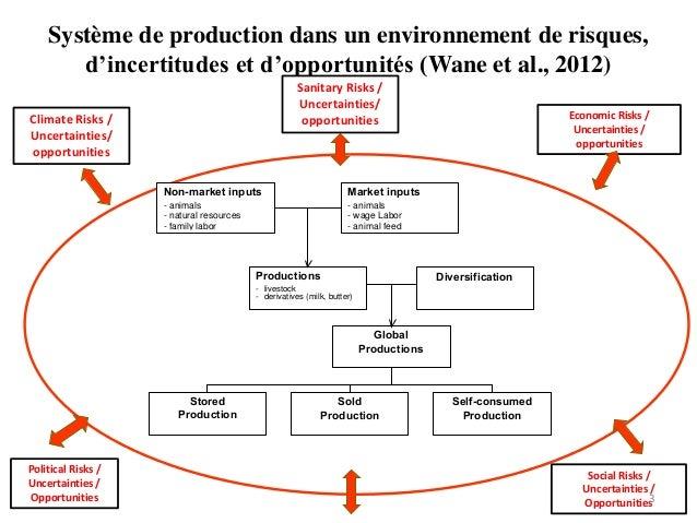 Système de production dans un environnement de risques, d'incertitudes et d'opportunités (Wane et al., 2012) Non-market in...