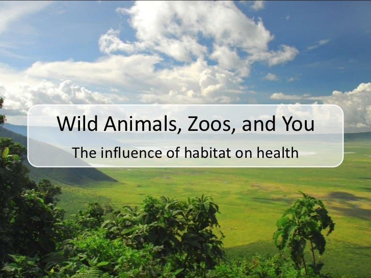 Wild Animals, Zoos, and You<br />The influence of habitat on health<br />