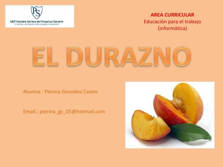 AREA CURRICULAR                                     Educación para el trabajo                                          (in...