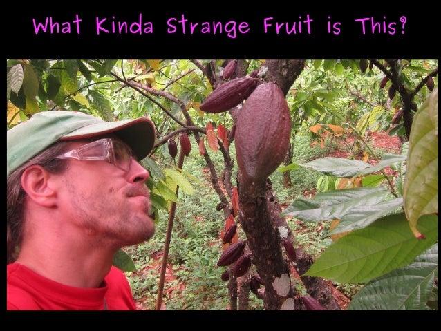 What Kinda Strange Fruit is This?What Kinda Strange Fruit is This?