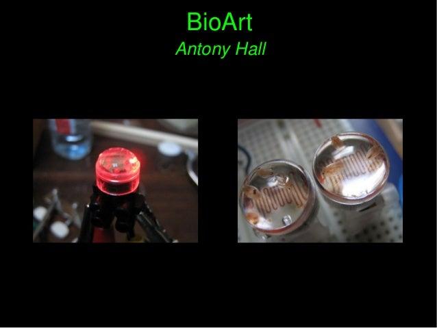 BioArtBioArt AntonyHallAntonyHall