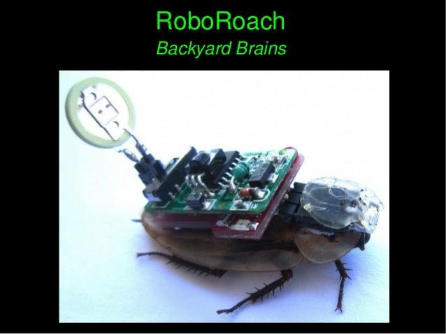 RoboRoachRoboRoach BackyardBrainsBackyardBrains