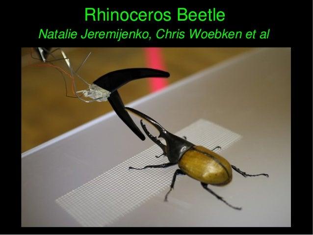 RhinocerosBeetleRhinocerosBeetle NatalieJeremijenko,ChrisWoebkenetalNatalieJeremijenko,ChrisWoebkenetal