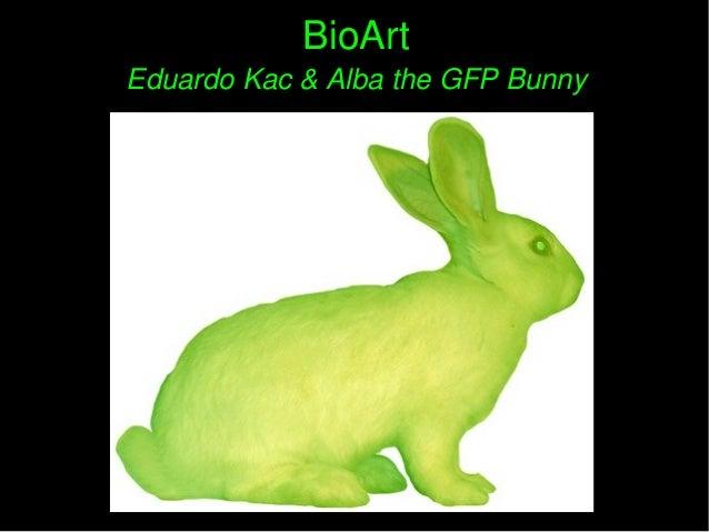 BioArtBioArt EduardoKac&AlbatheGFPBunnyEduardoKac&AlbatheGFPBunny