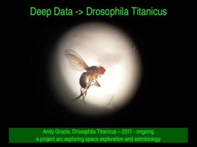 DeepData>DrosophilaTitanicus AndyGracie,DrosophilaTitanicus–2011ongoing aprojectarcexploringspaceexp...