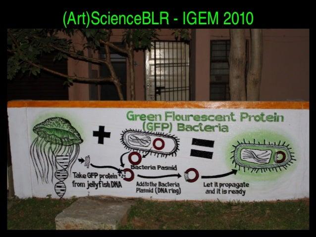 (Art)ScienceBLRIGEM2010