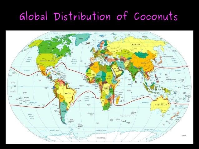 Global Distribution of CoconutsGlobal Distribution of Coconuts