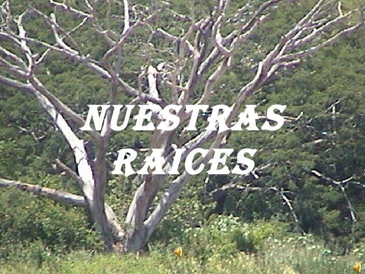 NUESTRAS RAICES