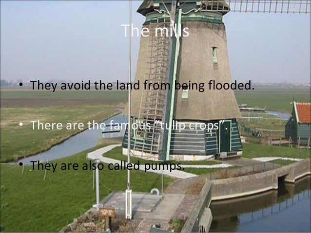 Location• They're in a low lying areas.• Andijk and Beemster are one of the most  important polders.• Felvopolders (locate...