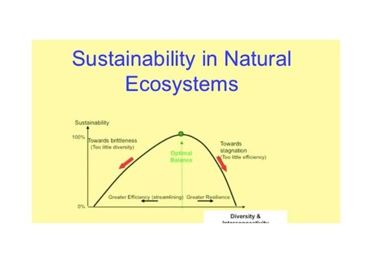 Duurzaamheid volgens Lietaer!