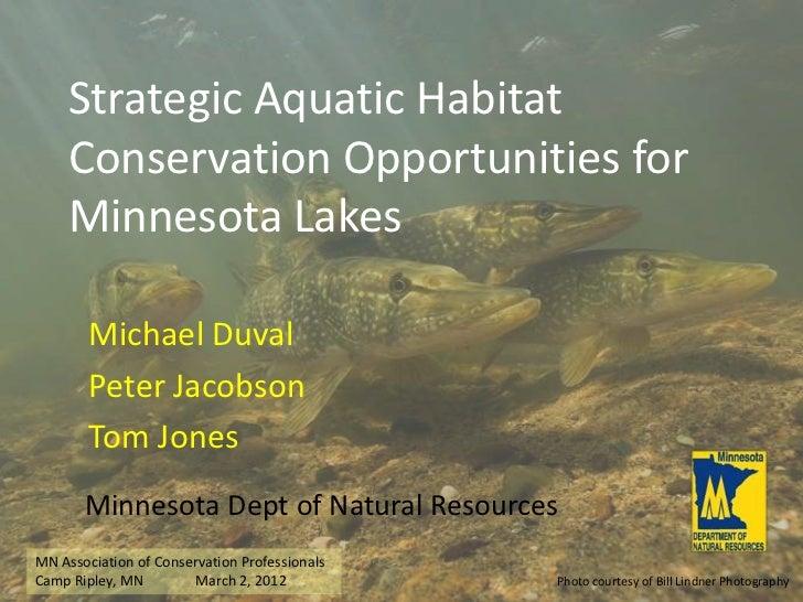 Strategic Aquatic Habitat     Conservation Opportunities for     Minnesota Lakes        Michael Duval        Peter Jacobso...