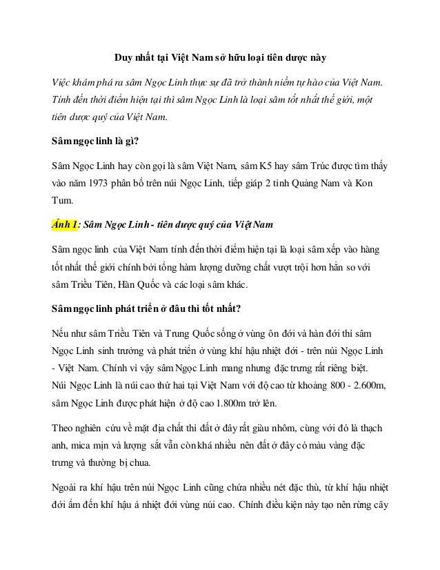 Duy nhất tại Việt Nam sở hữu loại tiên dược này Việc khám phá ra sâm Ngọc Linh thực sự đã trở thành niềm tự hào của Việt N...