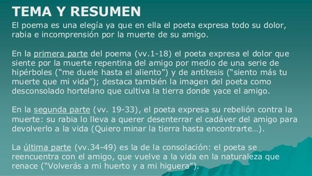 segunda antologia de poesia española pdf
