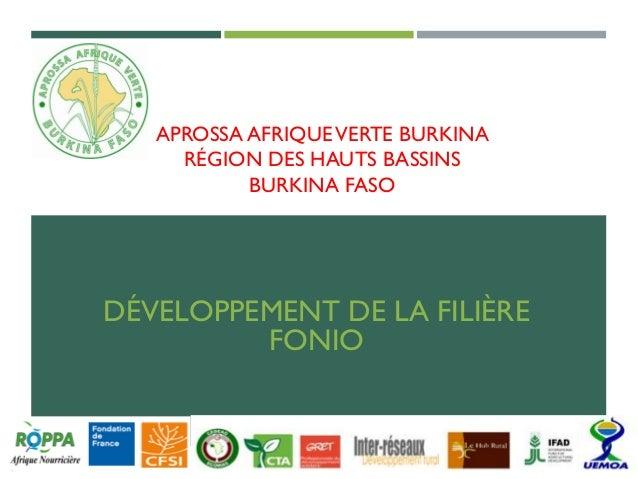 APROSSA AFRIQUEVERTE BURKINA RÉGION DES HAUTS BASSINS BURKINA FASO DÉVELOPPEMENT DE LA FILIÈRE FONIO