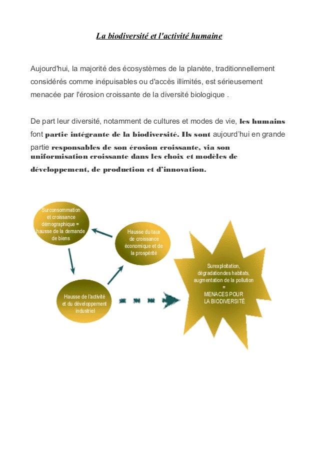 La biodiversité et lactivité humaineAujourdhui, la majorité des écosystèmes de la planète, traditionnellementconsidérés co...