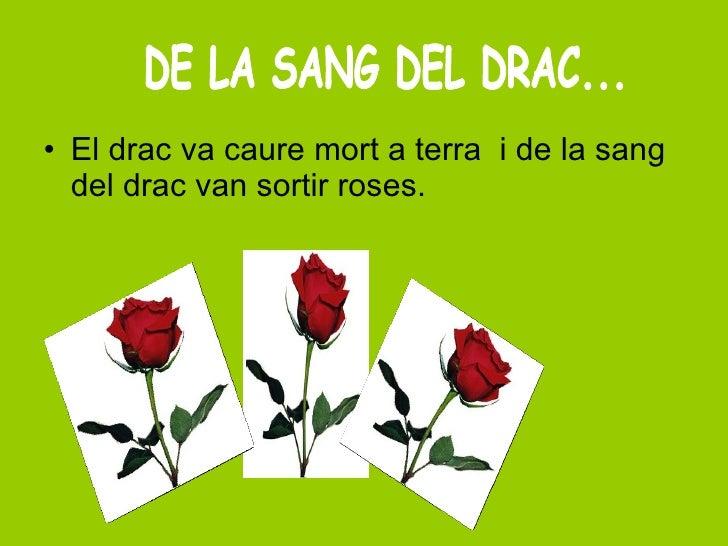 <ul><li>El drac va caure mort a terra  i de la sang del drac van sortir roses.  </li></ul>DE LA SANG DEL DRAC...