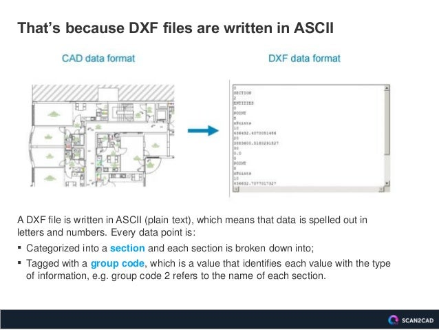 DXF versus DWG: A Comparison of Vector Graphic File Formats