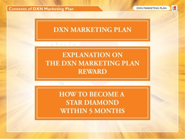 Web-based service business plan