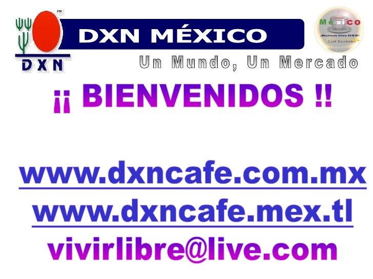 DXN MÉXICO<br />Un Mundo, Un Mercado<br />¡¡ BIENVENIDOS !!www.dxncafe.com.mx<br />www.dxncafe.mex.tl<br />vivirlibre@live...