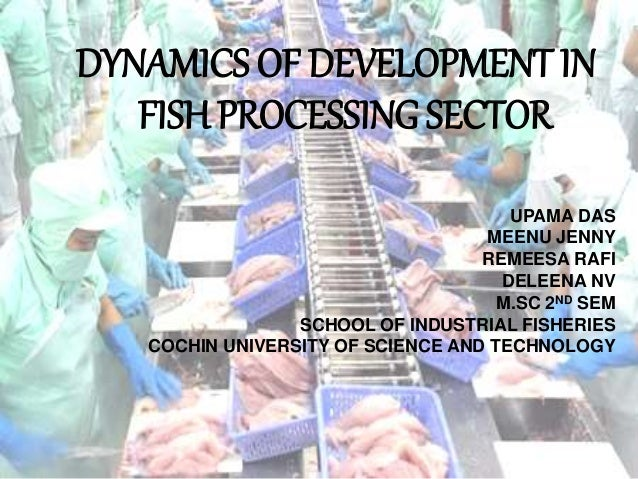 Dynamics of development in fish processing sector on