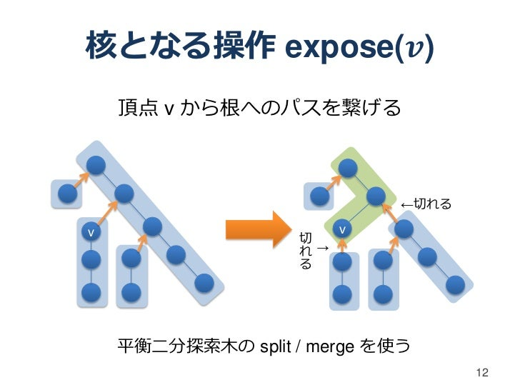 核となる操作 expose(𝒗)    頂点 v から根へのパスを繋げる                                ←切れるv                           v                    切...