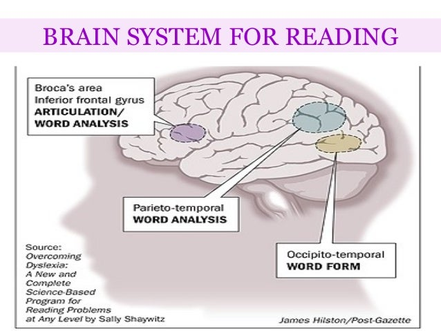 acquired dyslexia 2018 icd-10-cm range this condition may be developmental or acquired developmental dyslexia is marked by reading achievement that falls substantially below.