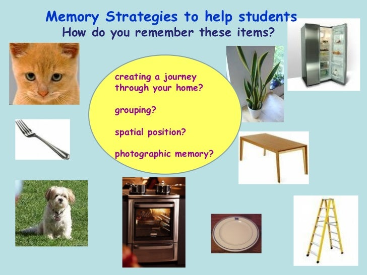 essay on memory strategies 250000 free memory strategies papers & memory strategies essays at #1 essays bank since 1998 biggest and the best essays bank memory strategies essays, memory.