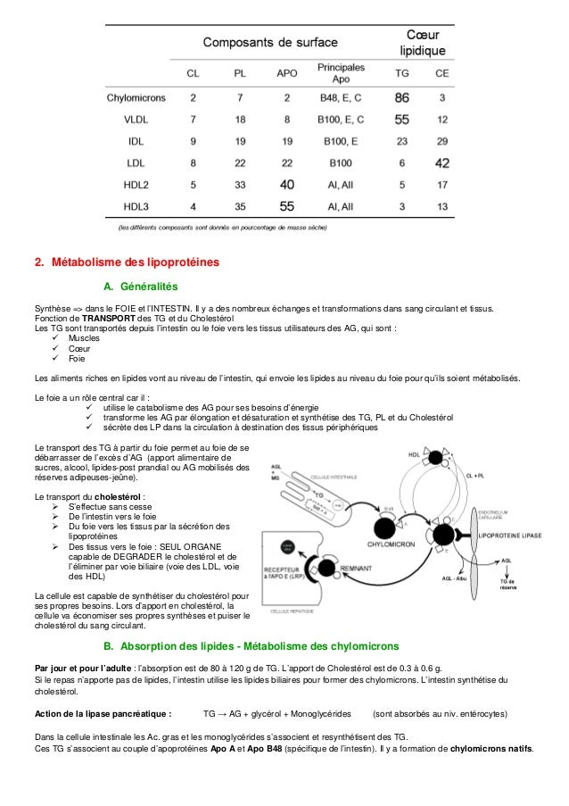 Dyslipoprotéinémies Slide 2
