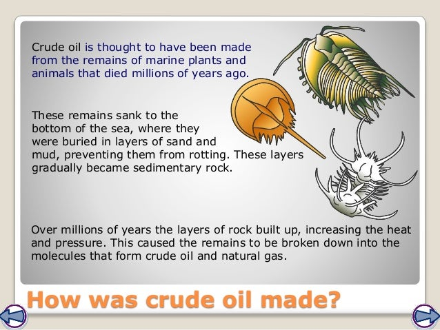 How was crude oil made? Crude oil is thought to have been made from the remains of marine plants and animals that died mil...